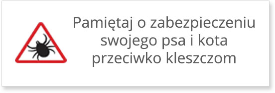 banner_mały_monile